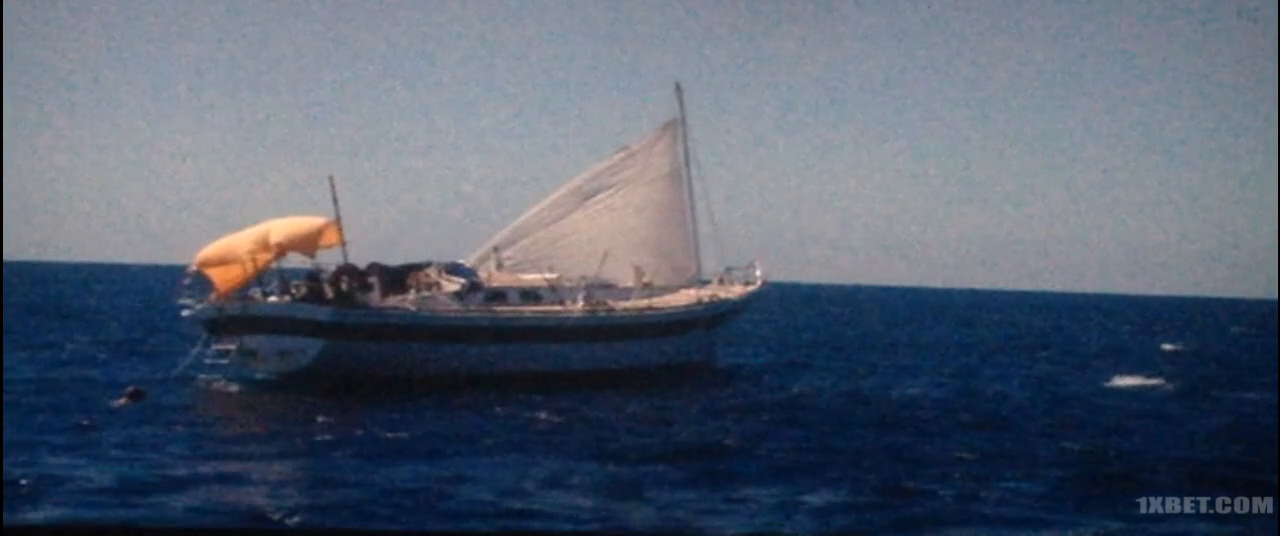 Adrift (2018) 720p HDCAM 1XBET
